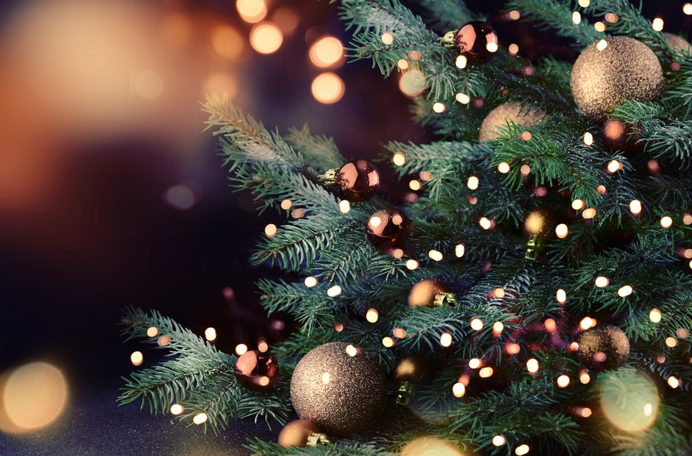 heres how fast your christmas tree can catch fire if you dont water it